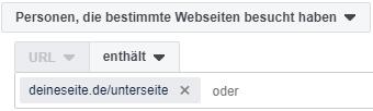 Screenshot: Custom Audience bestimmte Webseitenbesucher