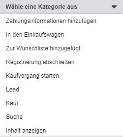 Screenshot: Dropdown für Kategorie beim Erstellen einer Custom Conversion