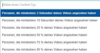Screenshot: Facebook Video Engagement Audience